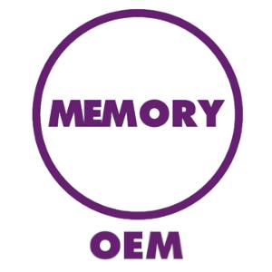 oem-memory-purple-300x300.jpg
