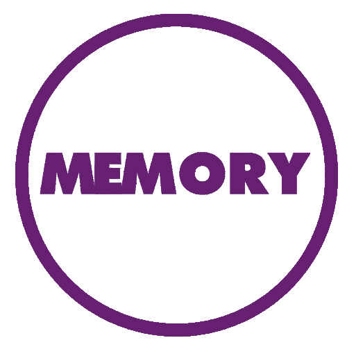 oem-memory-purple-category-image.jpg
