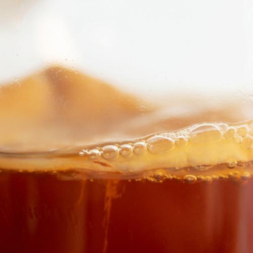 Kombucha SCOBY and starter liquid