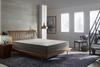 5 ZONE SLEEP2WIN BED
