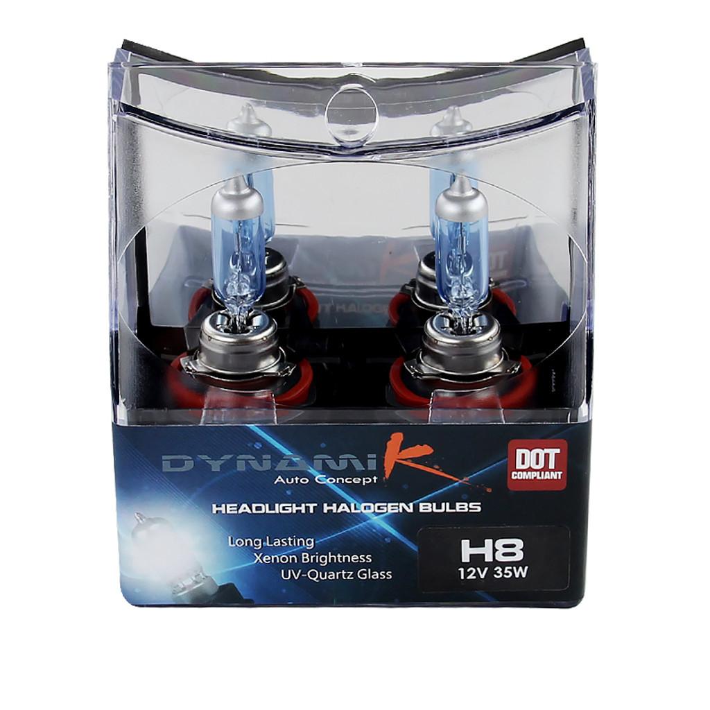 H8 Halogen Light Bulbs