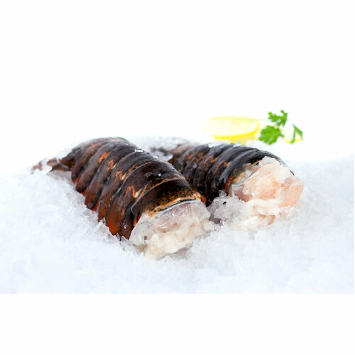 Two 12-14 Oz Cold Water Lobster Tails