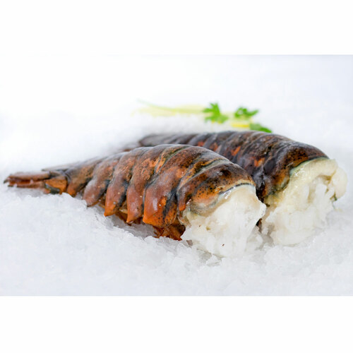 Two 20 - 24  OZ Cold Water Lobster Tails