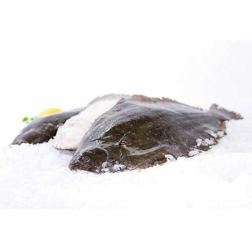 Flounder 6 Lb. Avg (2-3 Fish) Wholey's