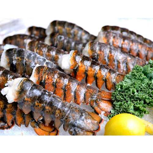 Five 20 - 24 Oz. Cold Water Lobster Tails Wholey's