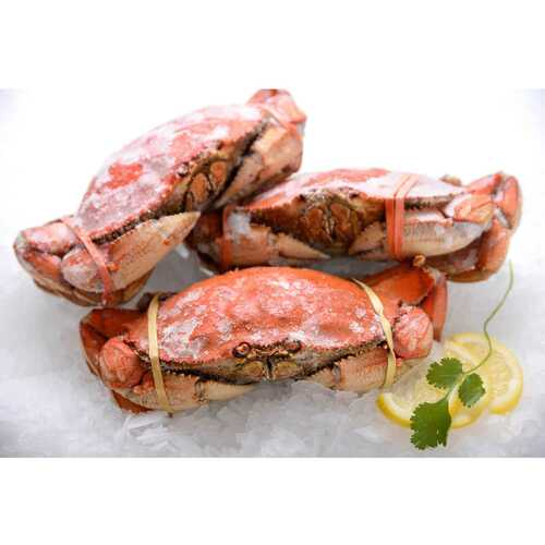 One Cooked Dungeness Crab (1.5 Lb. Avg) Wholey's
