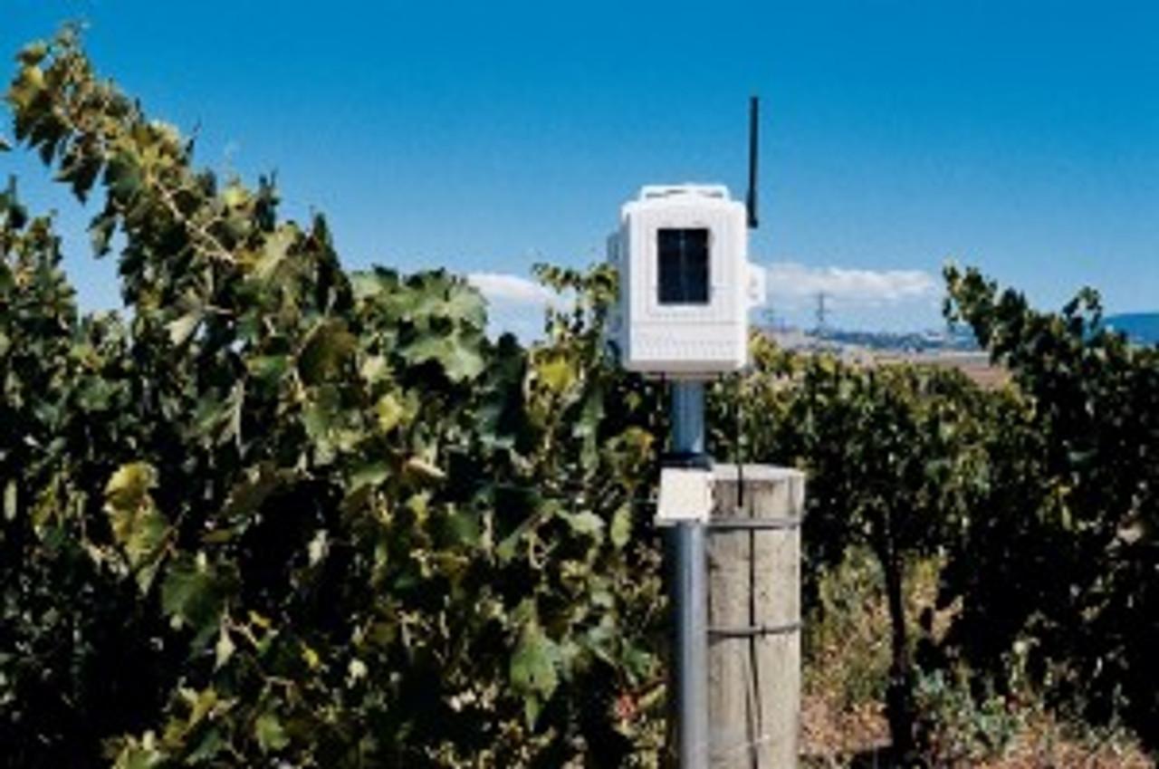 Davis 6345CS Complete Wireless Soil Moisture/Temperature Station