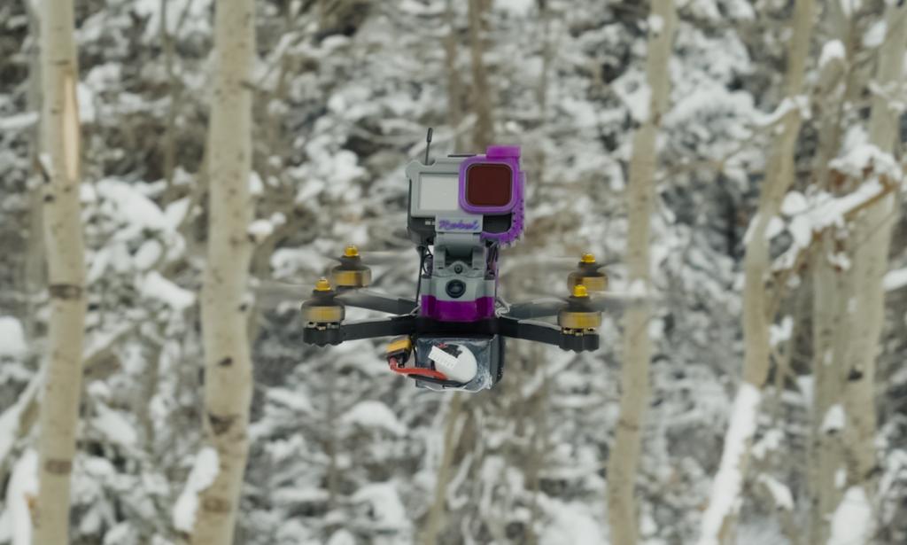 ruXus 5 inch DJI HD Ready to Fly Goggles & Radio Bundle
