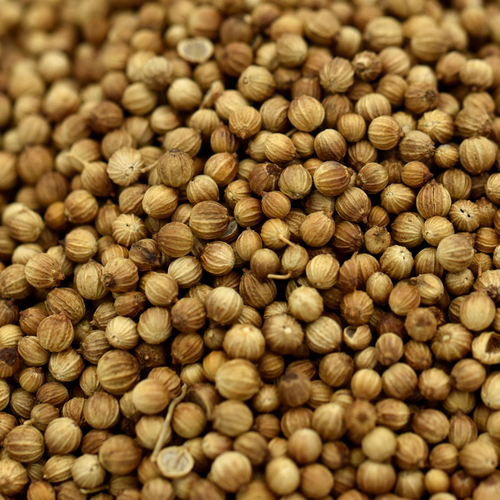 coriander seed, whole
