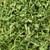 parsley, curly leaf, flakes