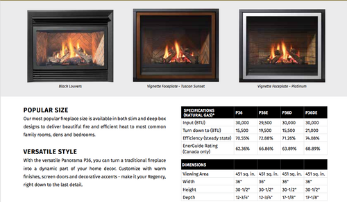 Regency® Panorama® P36 Gas Fireplace