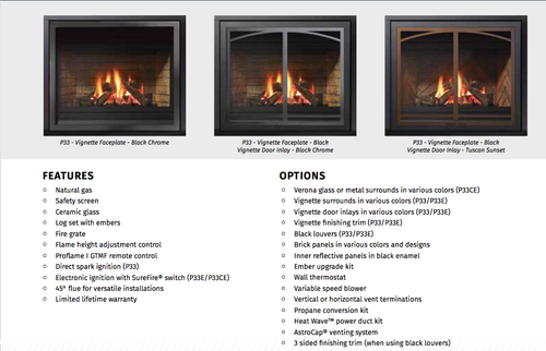 Regency® Panorama® P33E Gas Fireplace