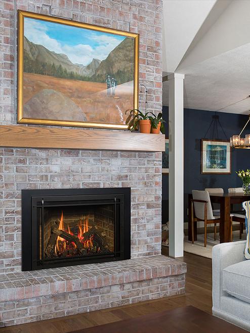 Roosevelt 34 Gas Fireplace Insert