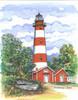 Assateaque Island Lighthouse copyright Donna Elias