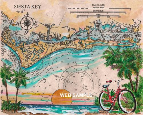 Charting Siesta Key by Donna Elias.
