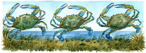 "Ocean City - Three Dancing Crabs in 12"" x 30"" Brown Driftwood Style Frame - ON SALE!"