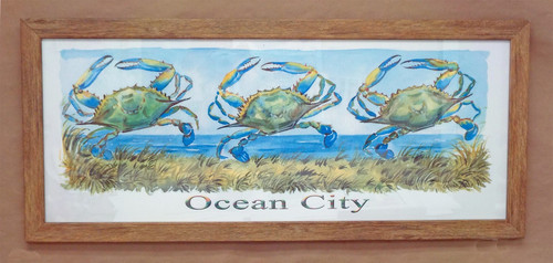 """Ocean City - Three Dancing Crabs in 12"""" x 30"""" Brown Driftwood Style Frame - ON SALE!"""