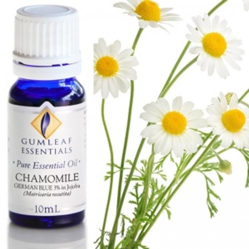 chamomile pure essential oils