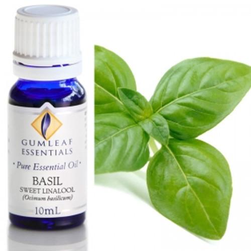 basil sweet linalool essential oil