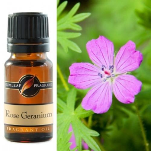 rose geranium fragrance oil