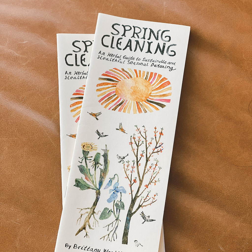 Spring Cleaning Journal