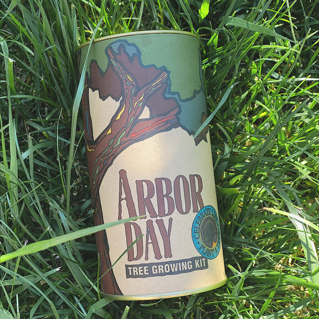 Arbor Day :  Giant Sequoia Seed Grow Kit