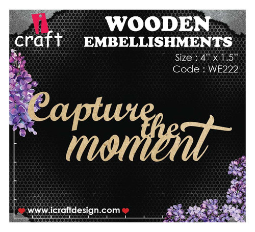 iCraft - Chipboard - Capture the Moment i222