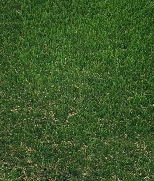 Bute 35  artificial grass 35mm