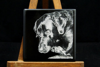 Laser Engraved Pet Photo on ceramic tile