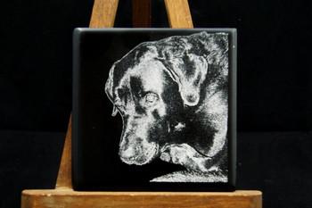 Laser Engraved Pet Photo on ceramic tile