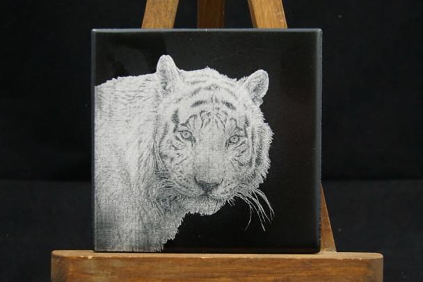 Laser engraved Tiger photo on ceramic tile
