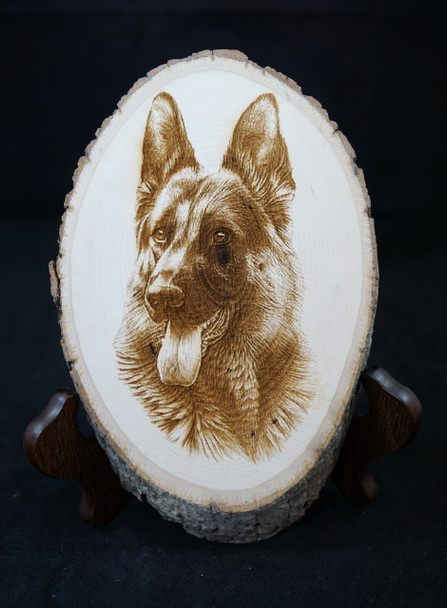 """Photo of a German Shepherd Dog that has been laser engraved on a """"live edge"""" basswood plaque."""