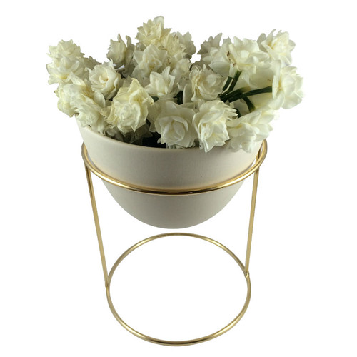 Ivy Muse - Nest Range Brass Stand with Egg Shell outer and Polished Clover internal