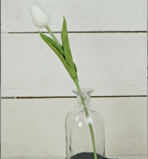 Foamy Tulip Bud Stem - White