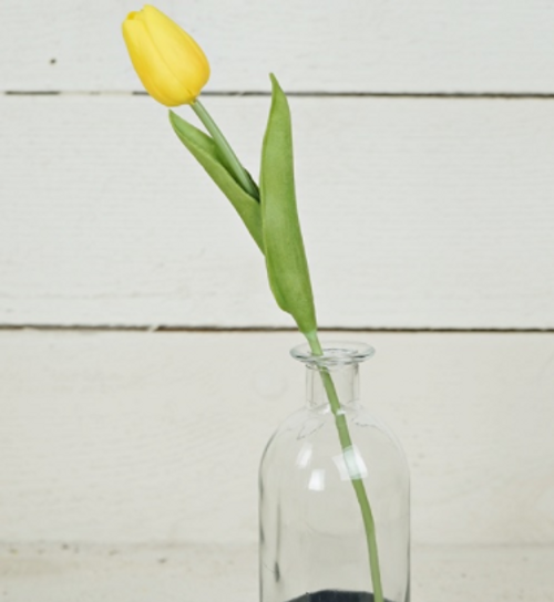 Foamy Tulip Bud Stem - Yellow