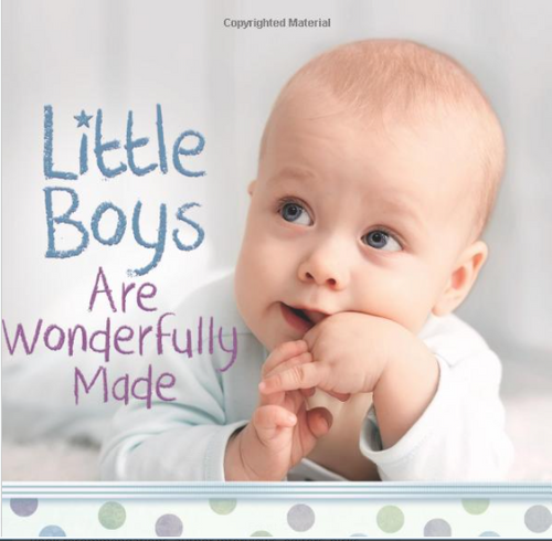 Little Boys Are Wonderfully Made by Harvest House Publishers