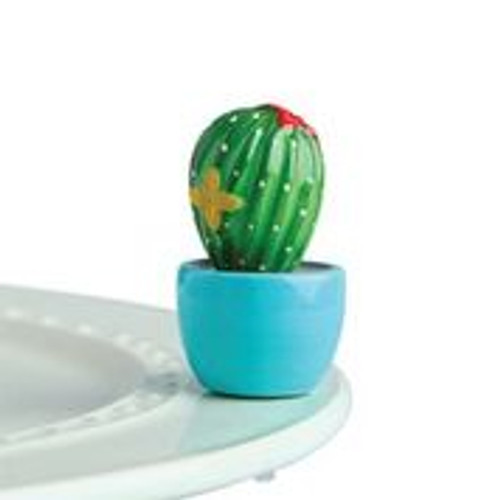 Mini Cant touch this Cactus