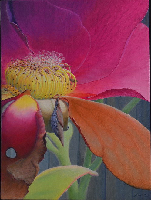 Cocooned Nectar Original Oil On Canvas Painting