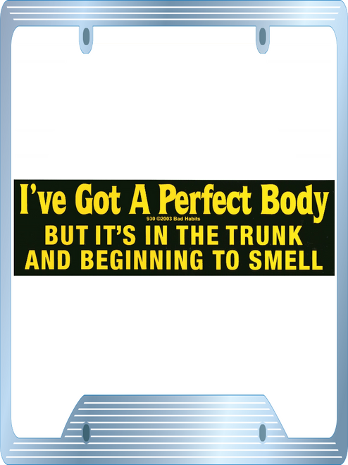 I've got a perfect body But it's in the truck and beginning to smell Bumper Sticker #930