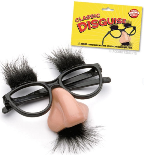 Classic Disguise Glasses
