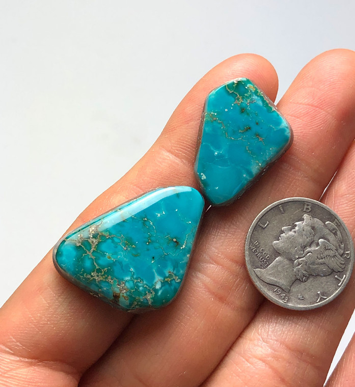 31.5 carats Fox Turquoise Cabochons