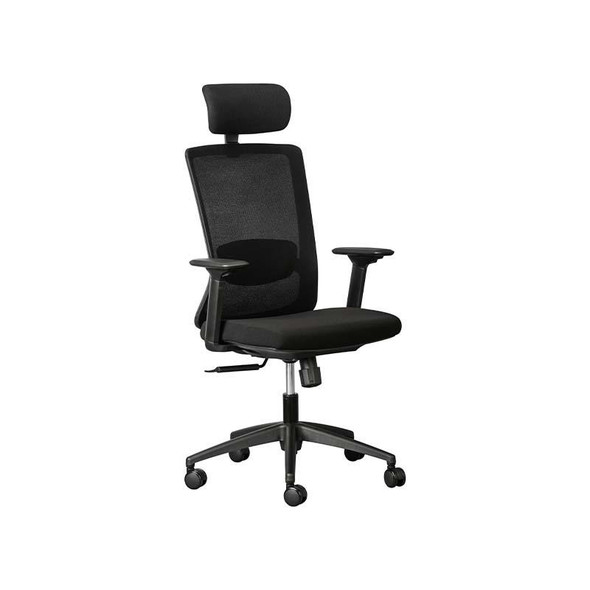 Alula Mesh High-Back Chair