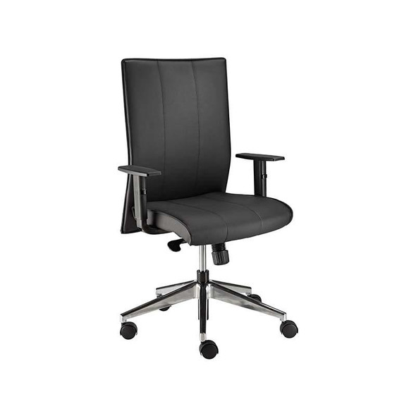 Stellar Medium-back Chair