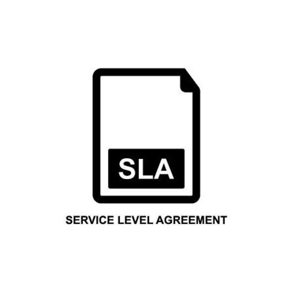 Basic 3 Month Interactive Support SLA