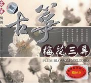Guzheng 古筝情韵:梅花三弄  (WYLU)