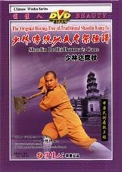 Shaolin Damo Stick (Bodhidharma's Crane) - (WM7B)