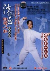 Xingyi Twelve-style Boxing - (WM8G)