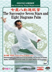 Sha Guozheng, Xingyi Bagua series-The Successive Seven Stars and Eight Diagrams Palm - (WMC4)