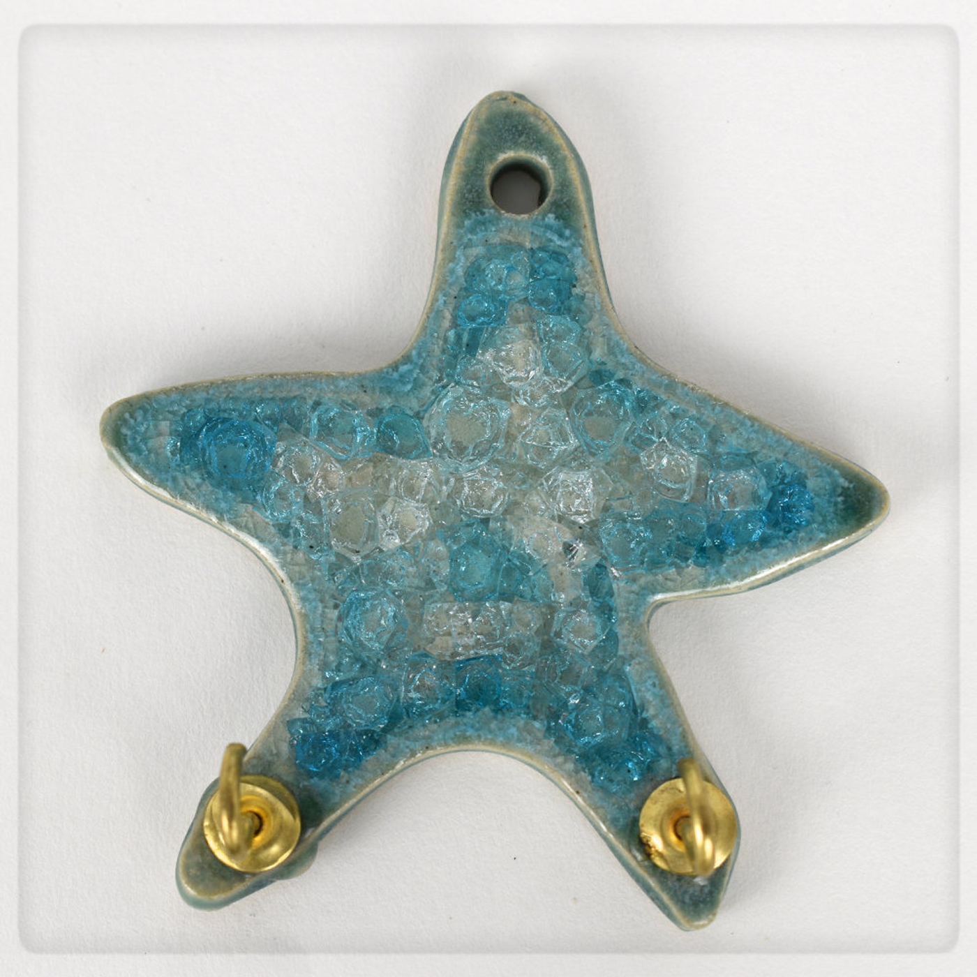 tropical star hook