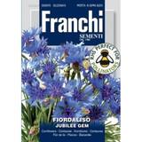 Fiordaliso/Cornflower Blu